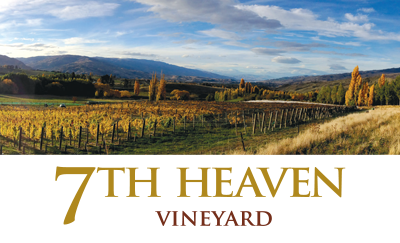 7th Heaven Vineyard in Cromwell, New Zealand. Central Otago Pinot Noir, Pinot Rose